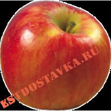 Яблоко красное 1кг