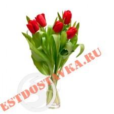 Букет тюльпанов 5шт